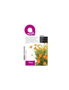 Семена Невен оранжев Лактофол Ботаника - 1