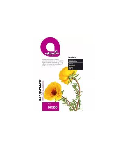 Калдъръмче Лактофол Ботаника - 1
