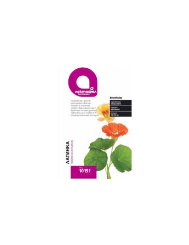 Семена Латинка Лактофол Ботаника - 1