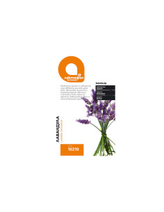 Семена Лавандула Лактофол Ботаника - 1